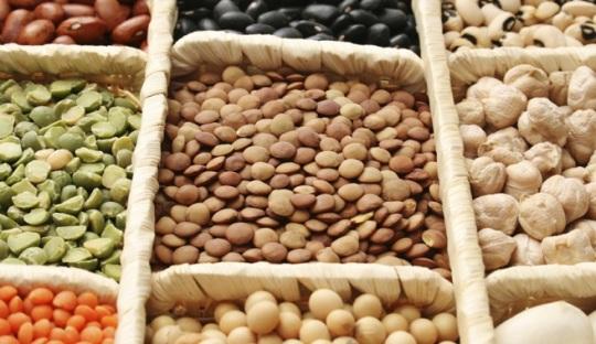Legumbres_Innovación salud alimentación nutrición